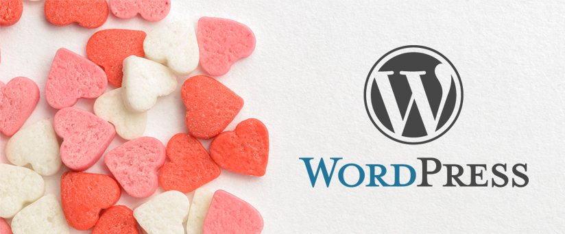 Reasons To Love WordPress