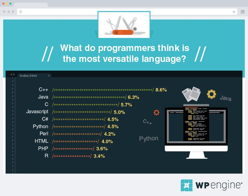 what do programmers think is the most versatile language